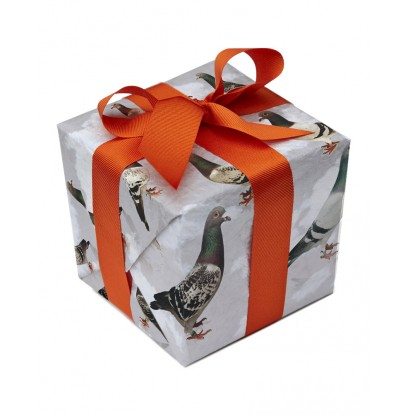 Pigeon gift wrap (2 sheet pack)