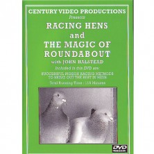 Racing Hens and the Magic of Roundabout