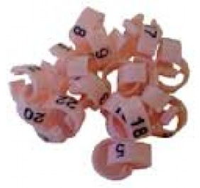 Numbered Clip Ring 1-25