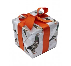 Pigeon gift wrap (2 sheet pack)